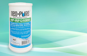 NP-RFG10BB Radial Flow GAC Filter Cartridge